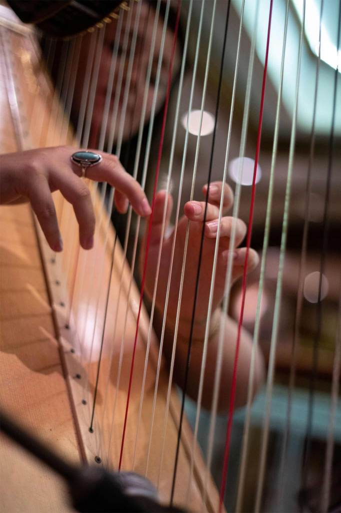 Find Solo Harpist for Events