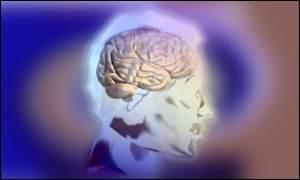 _38585563_brain_graphic300