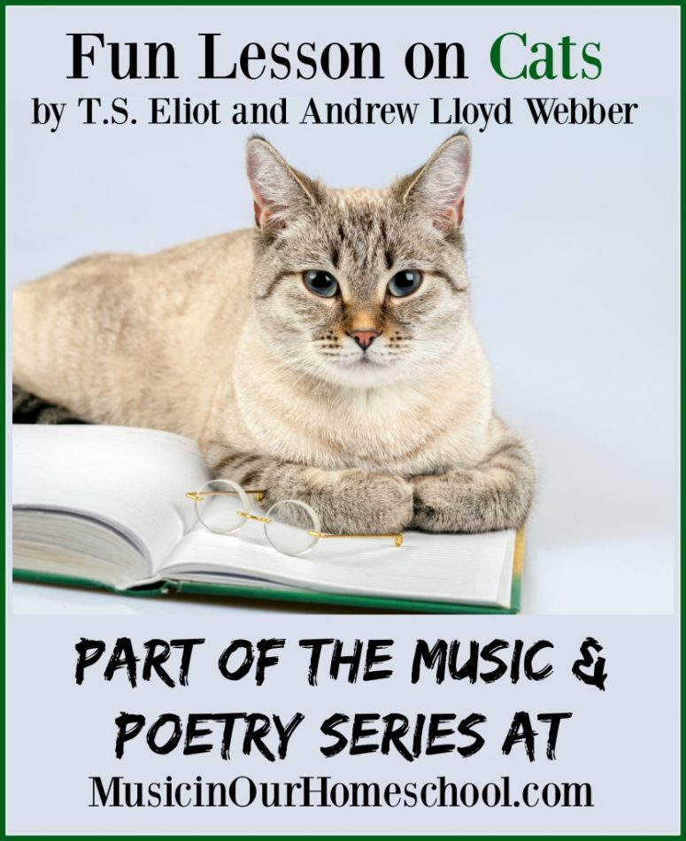 Fun Lesson On Cats by T.S. Eliot and Andrew Lloyd Webber