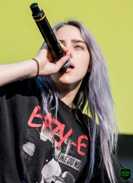 Billie Eilish 2 -3850