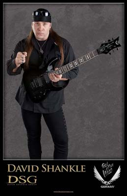 David Shankle guitar
