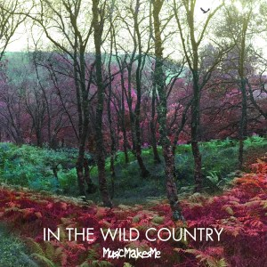 MusicMakesMeInTheWildCountry_CoverArt