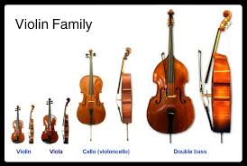 Violin, Viola, Cello, String Bass Teacher