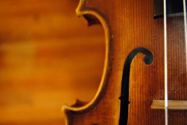Wedding/Event Violinist & Cellist in San Antonio ($250-400)