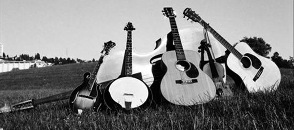 Bluegrass / Americana / Country band for Weddings & Private Parties