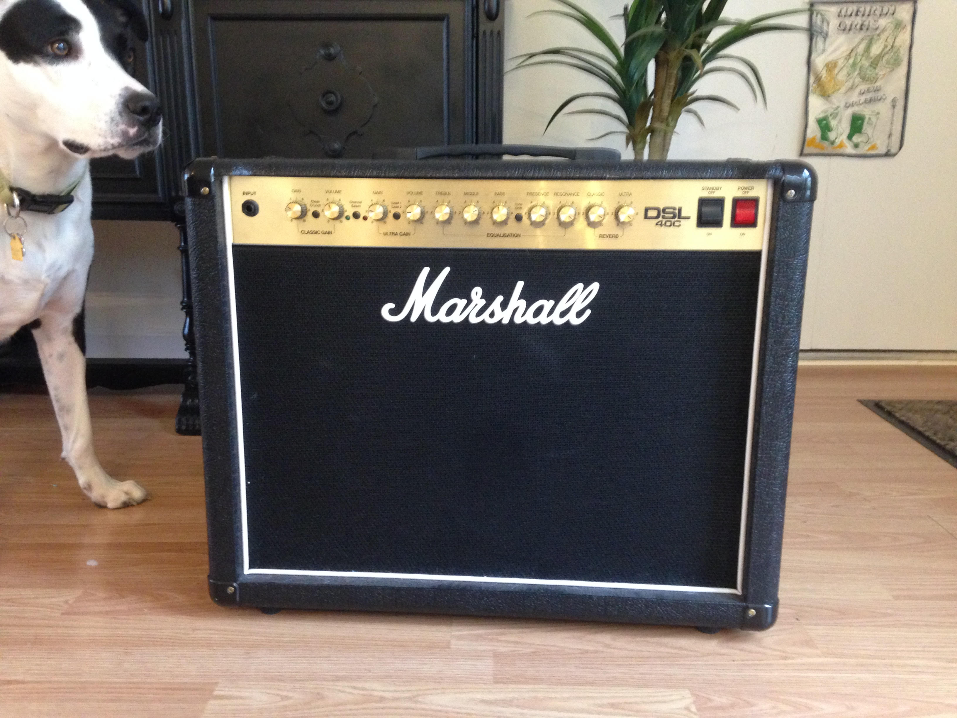 Marshall DSL 40C Tube Combo Amp Seeks New Home
