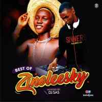 Mixtape: DJ Sas - Best Of Zinoleesky
