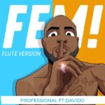 HOT: Professional ft. Davido – FEM! (Flute Version Instrumental)