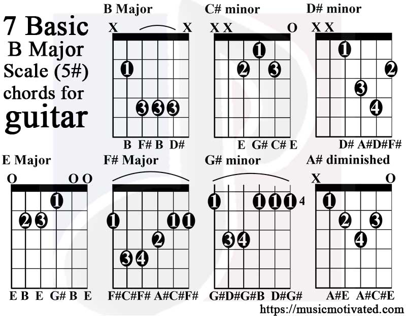 B Major scale charts for Guitar and Bass