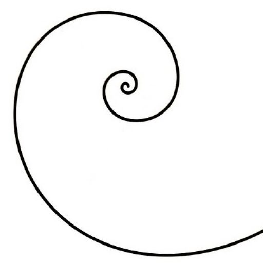 spirale musicordes