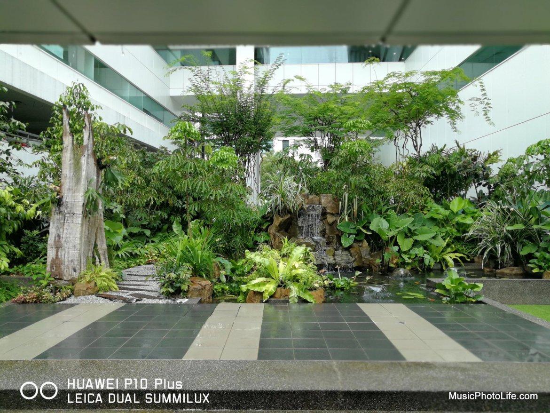Huawei P10+ test image - Garden