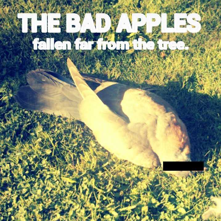 The Bad Apples 2
