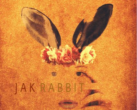 Jak Rabbit 6