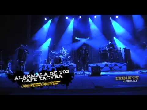 Cafetacuba -Alármala de tos- en vivo