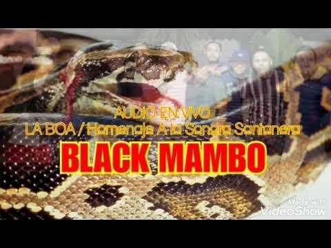 Homenaje a La Sonora Santanera | BLACK MAMBO Orquesta [Audio en VIVO]