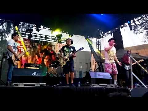 Toque mágico Yucatán Agogo en vivo
