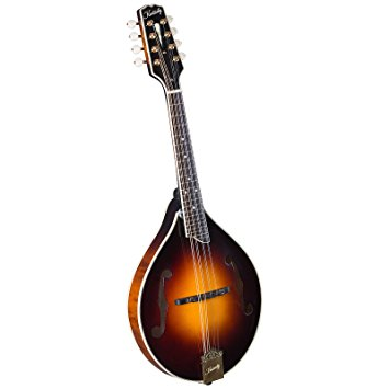 best starter mandolin