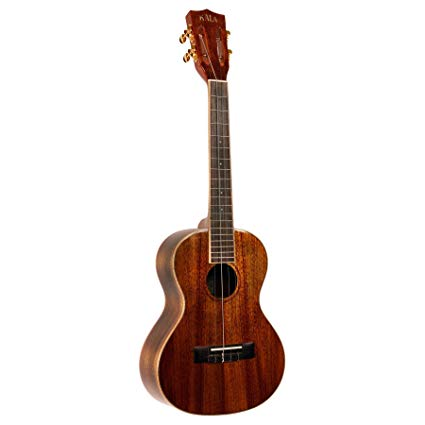 Best Tenor Ukuleles For Beginners