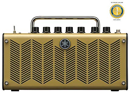 Best Acoustic Amp for Recording