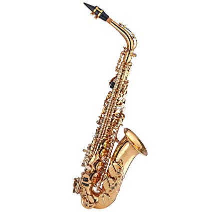 Top Alto Saxophones For Beginners