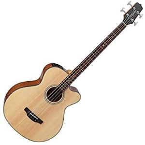 Top Acoustic Bass Guitars
