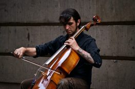 Best Cellos For Beginners and Students