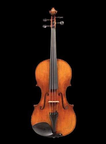 Top Professional Violins