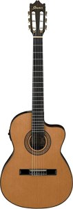 Best Nylon String Acoustic-Electric Guitar