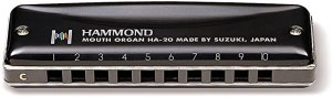 Top Harmonicas For Professionals