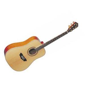 Washburn  WD160 SW Акустическая гитара