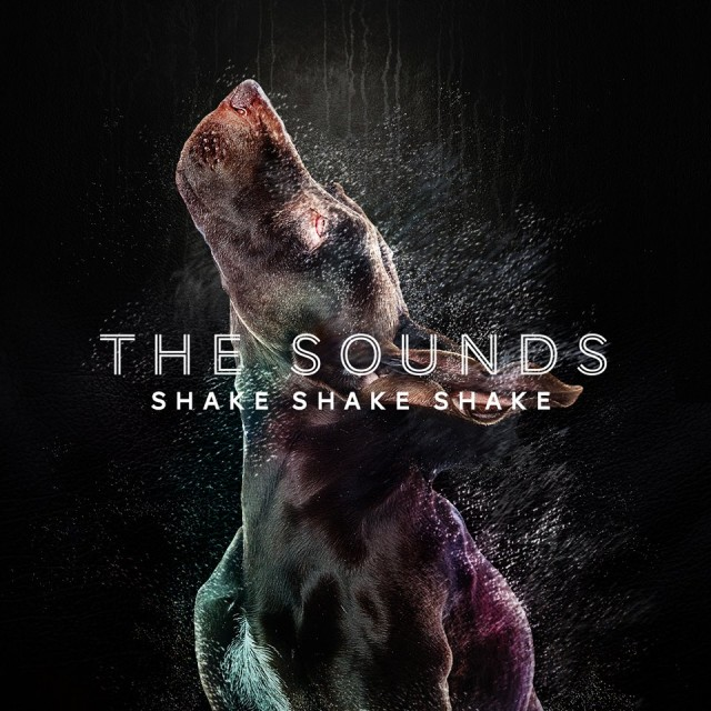the-sounds-shake-shake-shake-single-cover
