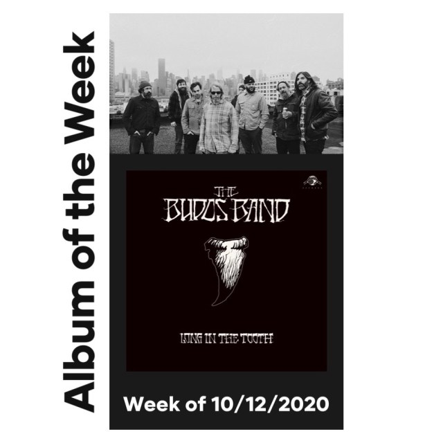 budos band long in the took album of the week music trajectory