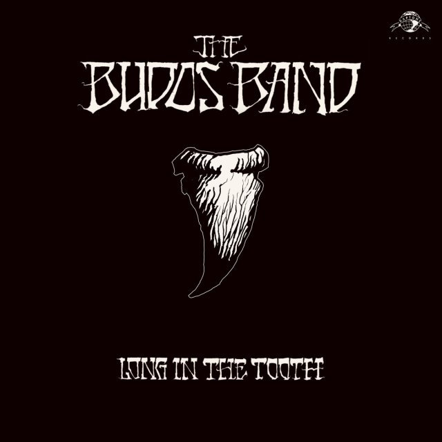budos band long in the tooth album trajectory 2020
