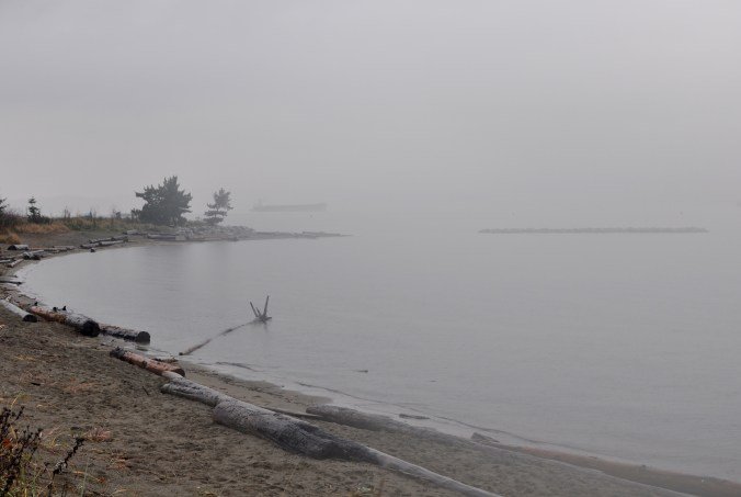 Jericho Beach on a rainy day.