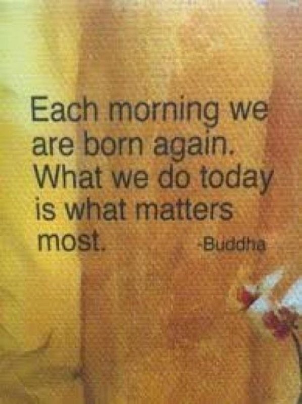 Buddhist Quotes Mindfulness