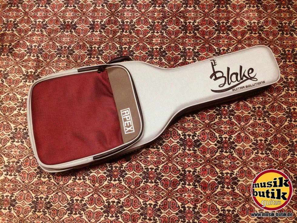 Blake APEX E-Gitarre.JPG