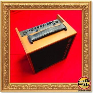 Akustik-Gitarren-Verstärker
