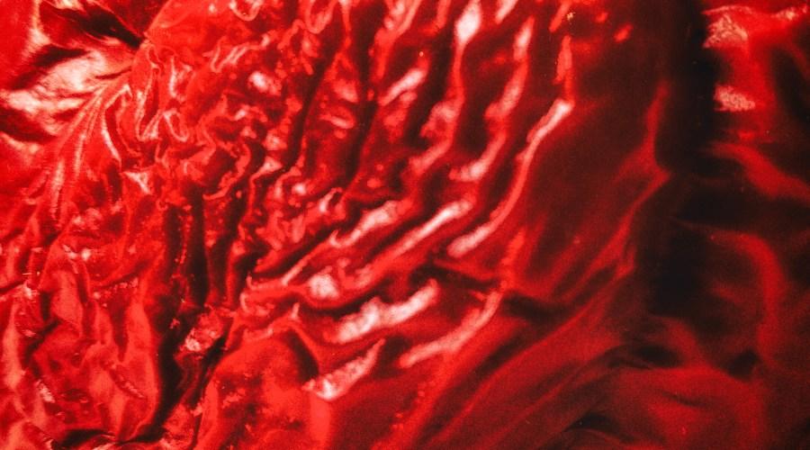 Die Paprika als Angriff auf die Leitkultur nach AfD-Vorstellung. Foto: Hufner