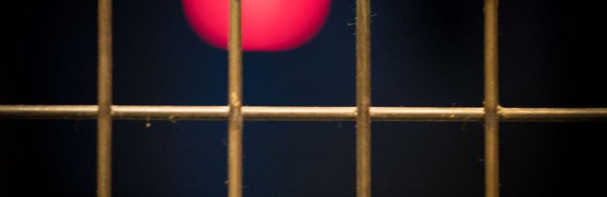 Ein Gitter. Foto: Hufner