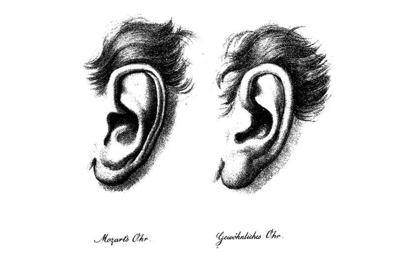 Mozarts Ohr - Gewöhnliches Ohr.