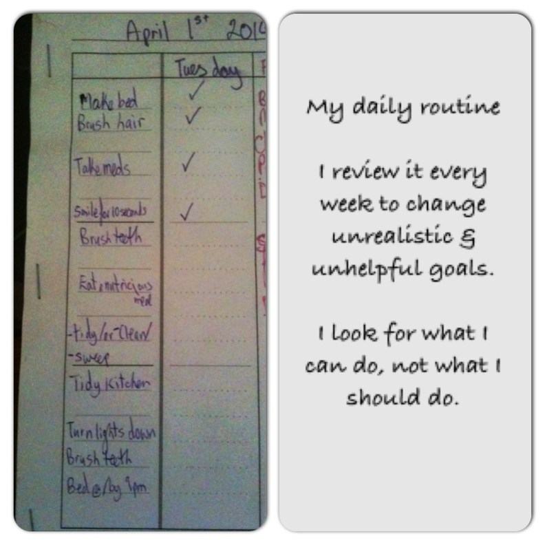 A meme split in half. One side has a handwritten daily schedule, the other half is a reminder to review it for unrealistic goals and too high expectations.