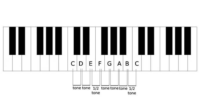 Ukulele Music Theory. The distance between the notes in a major scale.