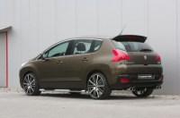 Dachspoiler Peugeot 3008 alle Modelle von MUSKETIER ...