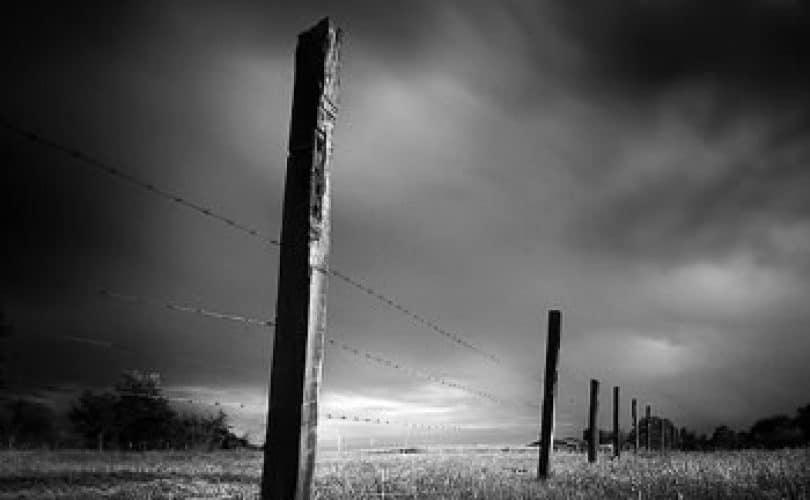Fatwa Ulama: Fenomena Kematian Mendadak