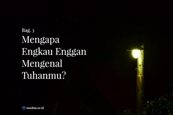 Mengapa Engkau Enggan Mengenal Tuhanmu? (Bag. 3)