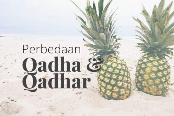 Perbedaan Qadha dan Qadar
