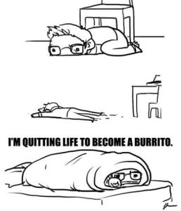 Funniest_Memes_i-m-quitting-life-to-become-a-burrito_13756