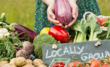 Why Our Food Matters More Than You Think