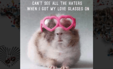 What Is the Love Glasses Revolution?