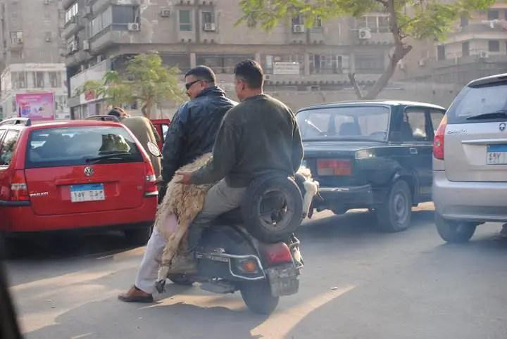 https://i0.wp.com/muslimmatters.org/wp-content/uploads/2009/11/amatullah_bikes.JPG